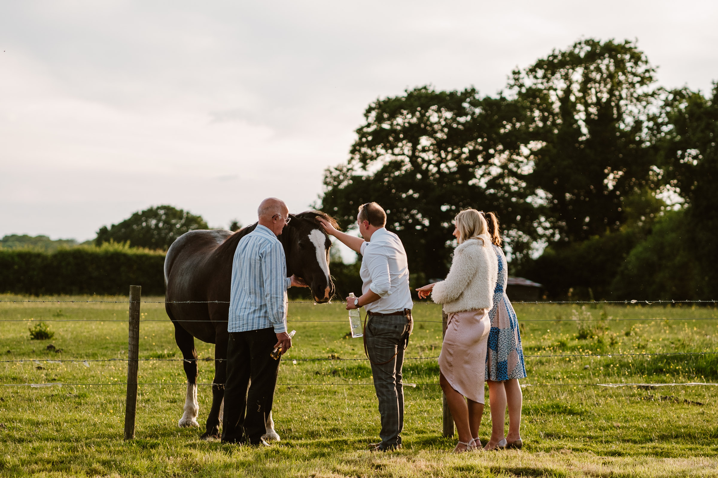 Wedding guests stroking horse, tipi wedding